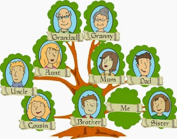 drzewo-rodowe1